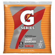 Gatorade Powdered Mix Pouch Fruit Punch