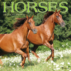 TF Publishing Monthly Wall Calendar 12