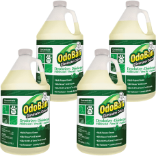 OdoBan Eucalyptus Multi purp Cleaner Concentrate