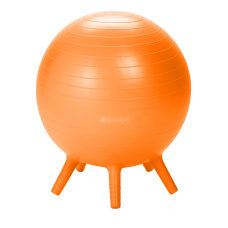 Gaiam Kids Stay N Play Ball
