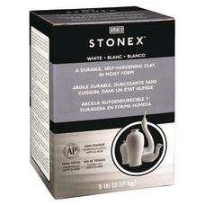 Stonex Self Hardening Clay 5 lbs