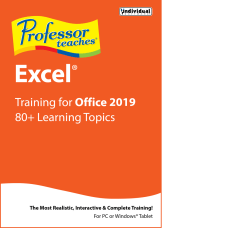 Individual Software Professor Teaches Excel 2019