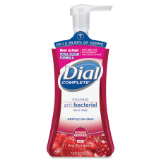 Dial Foaming Antibacterial Hand Wash Power