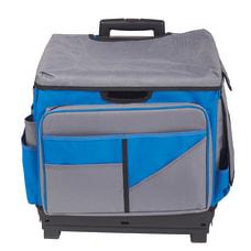 ECR4KIDS Universal Plastic Rolling Cart Organizer