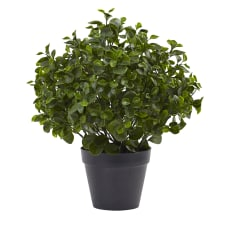Nearly Natural 23 H Peperomia Plant