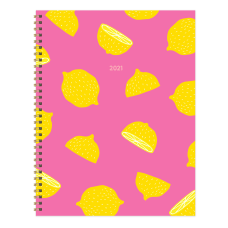TF Publishing Large WeeklyMonthly Planner 8