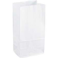 Sparco White Kraft Paper Bags 6